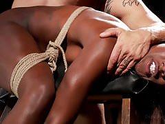 Ebony Submission