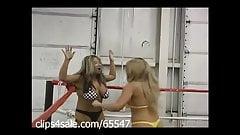 Spotlight on Female Wrestling at Clips4sale.com
