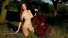 Music  N15