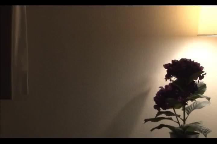 アダルト動画まとめ+ <東條美樹>母失格 息子に夜這いされたあの日から…肉体の快楽に溺れるふしだらな母!