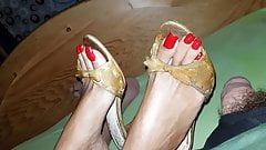 I'm squirting my wife's mules between her toes.