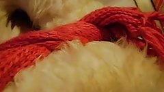 Packing in sheep fur. love sheepskin, furbondage.'s Thumb