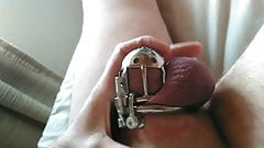 In my chastity cage