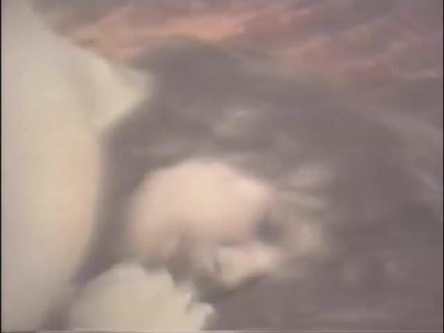 Vintage Amateur Wife Sharing, Free Vintage Redtube Porn Video-7944