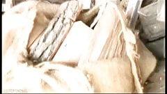 Massive Dildo Cellar Bang