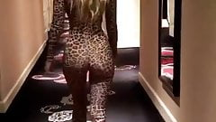 Kitty Cat from behind