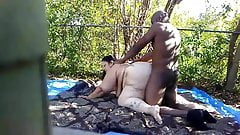 Backyard fun.....