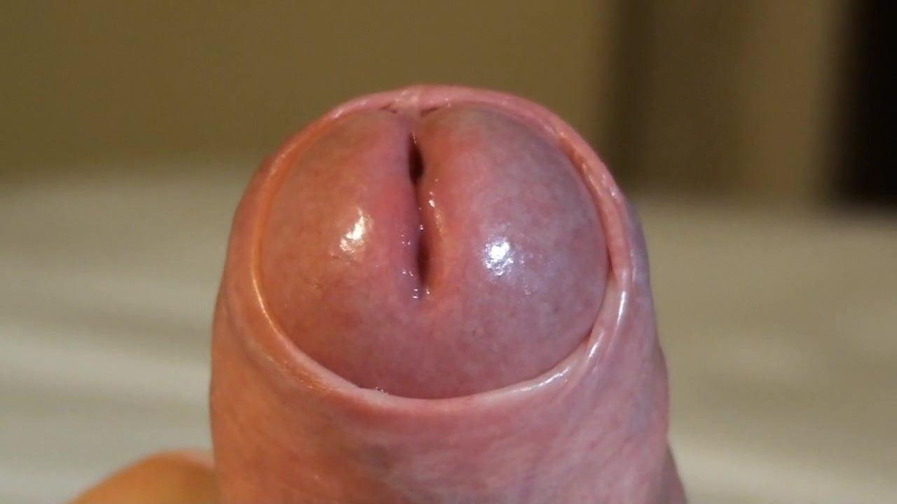Vidéo de sexe non circoncis