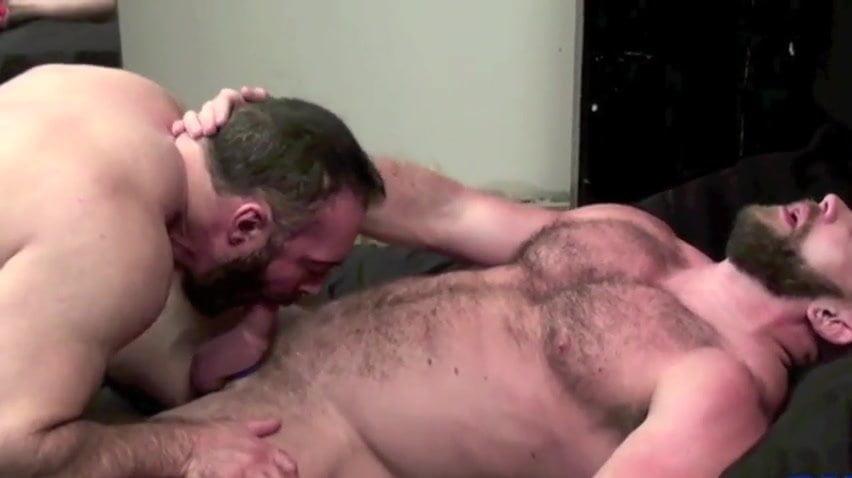 Gay Bear Porno