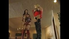 Taylor Wane in Action ( 3 )