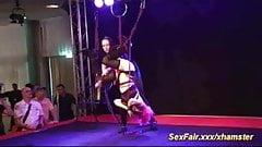 Crazy girls do crazy erotic shows