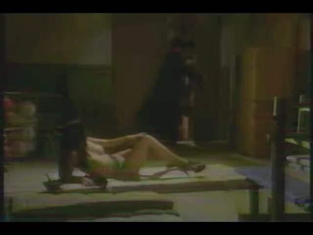 Sukeban instructor (1995)