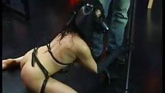 Slave in dungeons made to suck cock