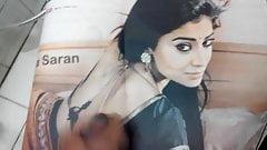 Shriya saran is awesome