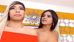 Tranny on Shemale Jerking and Blowjob