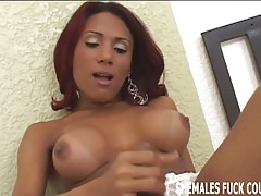 I want to see you fuck that hot tranny hard