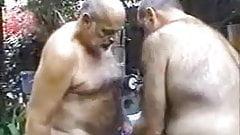 Three Old Daddies Sucking and Fucking