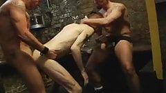 Cellar Hot Sex