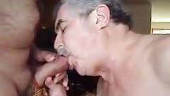 Mature men sucking cock