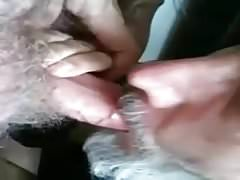 Daddy bear sucking cock great