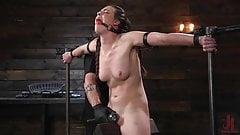 Porn Goddess Casey Calvert Ass Fucked and Tormented in Metal