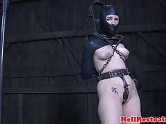 Restrained sub whipped during humiliation