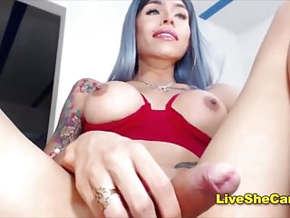 Gorgeous Colombian shemale online