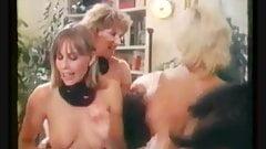 Perverse Fanny (1982)