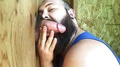 Gloryhole bearded sucker