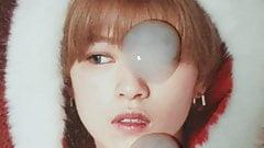 Twice Jeongyeon cumtribute
