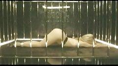 Shakira She Wolf Cage Montage