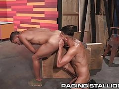 RagingStallion Pasionnate Latino and Black Males