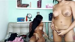 TWO SHEMALES MASTURBATE ON WEBCAM