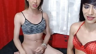 Two Colombian TGirl fucking