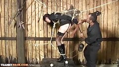 Brunette tranny in bondage gets fucked doggystyle till
