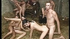 Groupsex Party on the farm