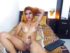Busty Shemale Stroking her Big Hard Dick