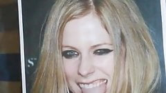 Tribute 4 Avril Lavigne n. 10