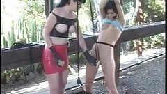 Babe getting pussy clamped under the gazebo