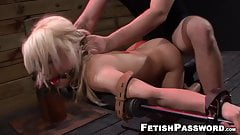 Blonde Alice Amore bent over for bondage pounding