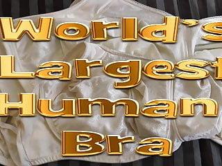 Worlds largest black boobs - Worlds largest human bra