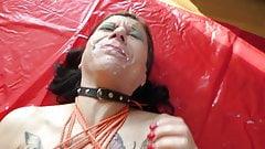 Slut Petra Gameday 2019