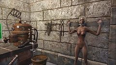 Fallout 4 Castel of vices