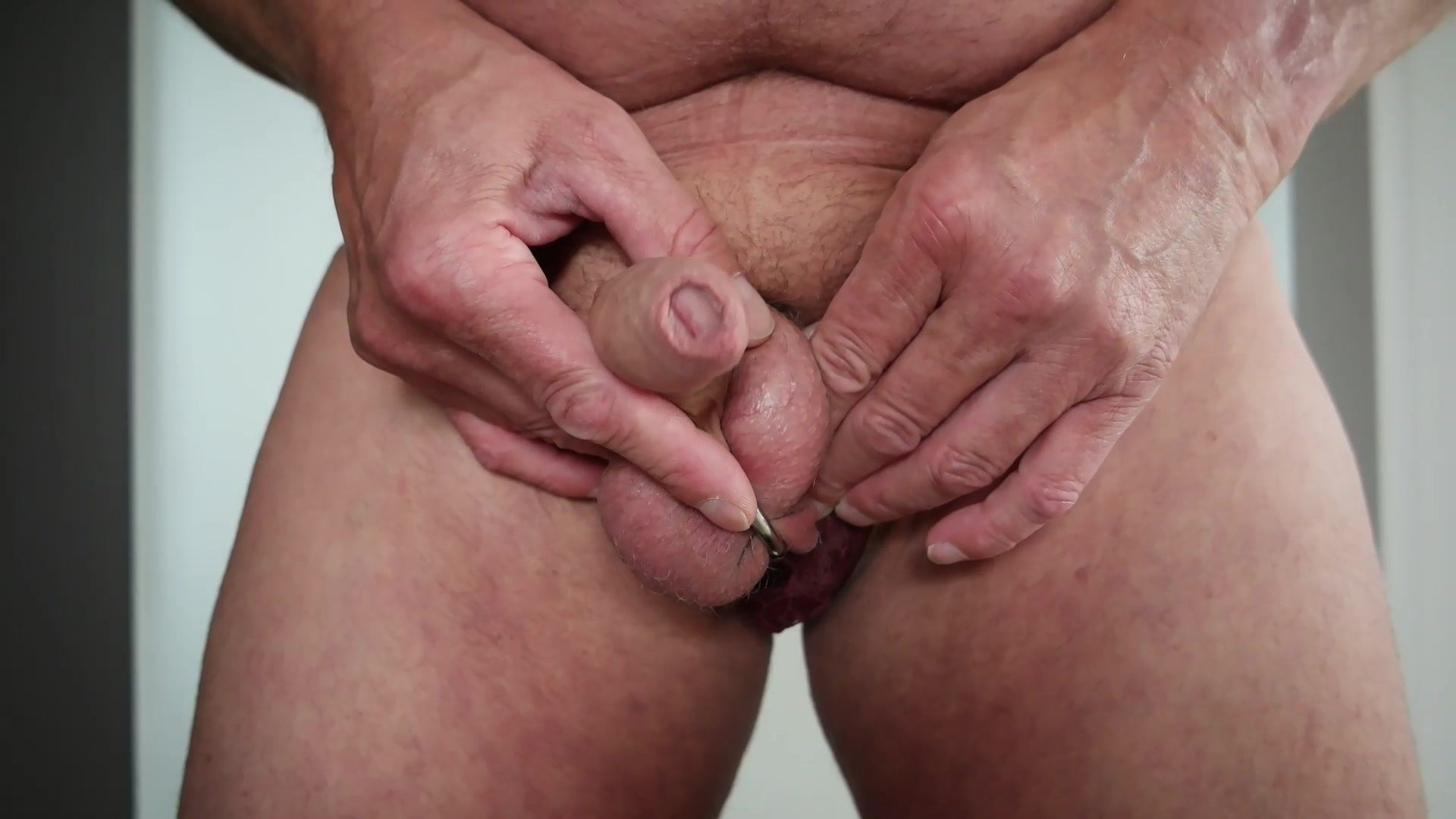 Cock-Ring and Anal-Dildo