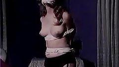 Vintage bondage clip