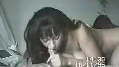 Danica Collins Home Video (1995)