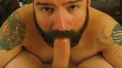 Bearded gay bear sucks hard dick