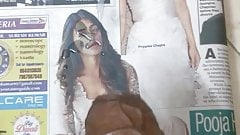 Cum tribute to Pooja Hegde