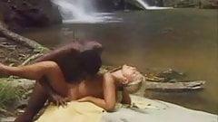 Sex Safari 1
