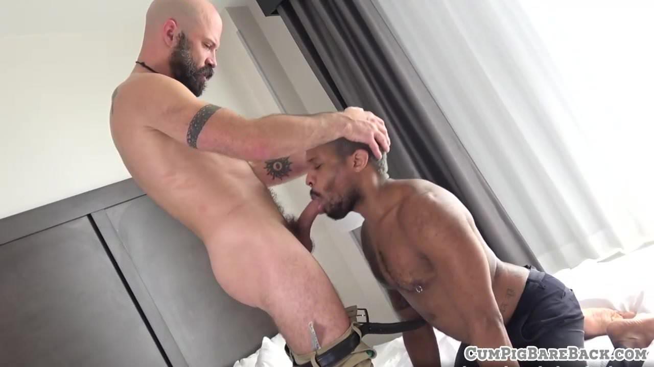 hot latin gay videos